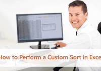 How to perform a Custom Sort in Excel