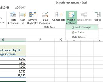 scenario in Excel 2013